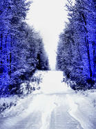 Winter Blues 076